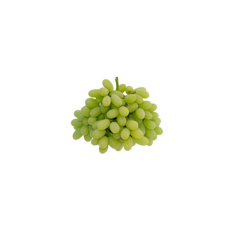 THOMPSON SEEDLESS (SULTANINA BIANCA)